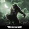 Play Werewolf 5 Differences