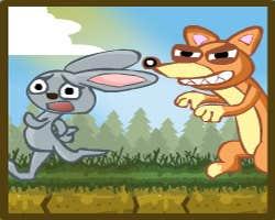 Unde sunt iepurii ?