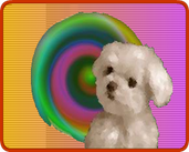 Play Cute Puppy Match