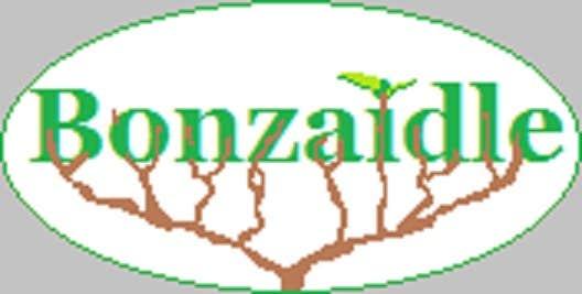 Play Bonzaidle