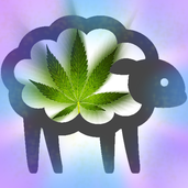 Play Weed For Sheep #3hGJ