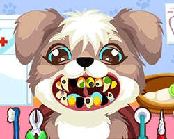 Play Puppy at the Dentist