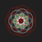 avatar for z49203
