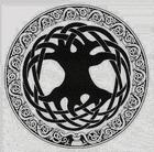 avatar for cboy2