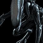 avatar for frodotudo
