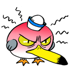 Seagull mad
