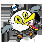 Seagull shocked