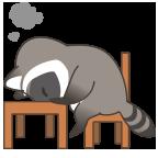 Raccoon headdesk