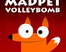 Play Madpet Volleybomb