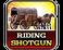 Play Riding Shotgun