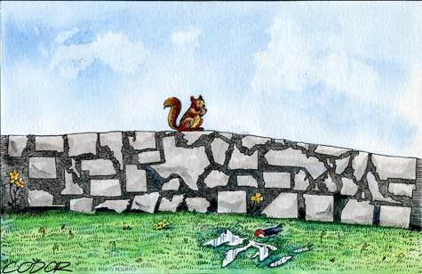Play Walls no more