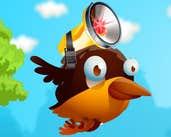 Play Smart Birds