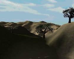 Play Poinltess Desert