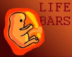 Play Life Bars