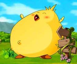 Play Happy Fat Chicken