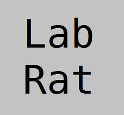 Play We Are the Lab Rats