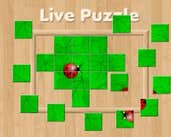 Play Live Puzzle