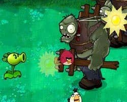 Play Angry Bird and Zombies