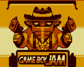 Play Wild West The Sheriff