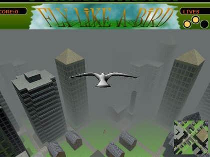 Play Fly like a Bird 1