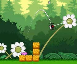 Play Gluttonous Spider