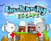 Play Laboratory Escape