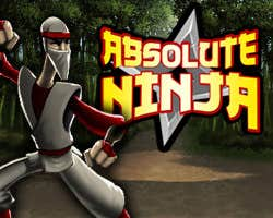 Play Absolute Ninja