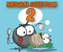 Play Natural Selection 2
