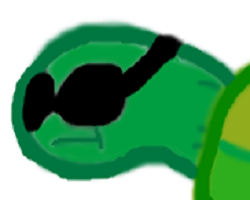 Play Pet The Turtle