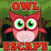 Play Owl Escape
