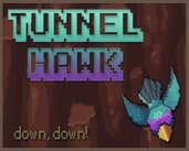 Play Tunnel Hawk