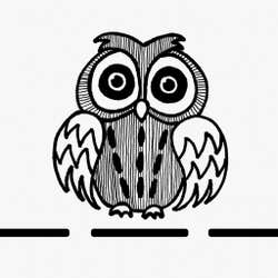 Play Quote Owl: A Hidden Message Game