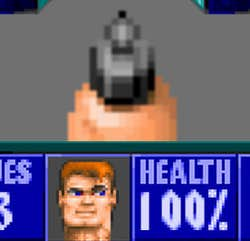 Play Wolfenstein 3D