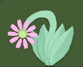 Play flower dream