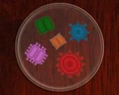 Play Petri Dish