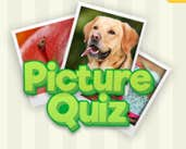 Play Picture Quiz