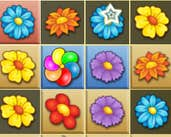 Play Blossom Garden Crush