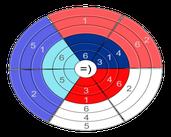 Play Circle Sudoku