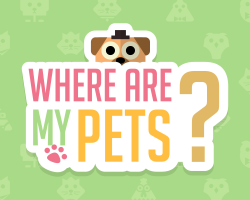 Play Where Are My Pets?