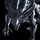 avatar for Yakamushama