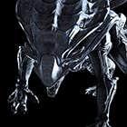 avatar for prelar