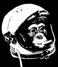 avatar for Seel