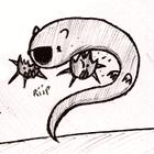 avatar for lolsplat