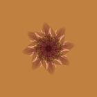 avatar for TotalyRandmPersn