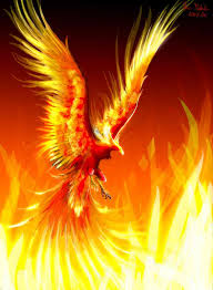 avatar for fireflamepower