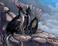 avatar for valenciamario23