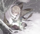 avatar for mifodus