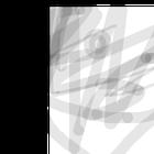 avatar for sabasaba121