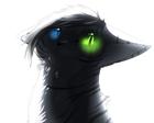 avatar for znoxfett