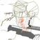 avatar for sharkilleer